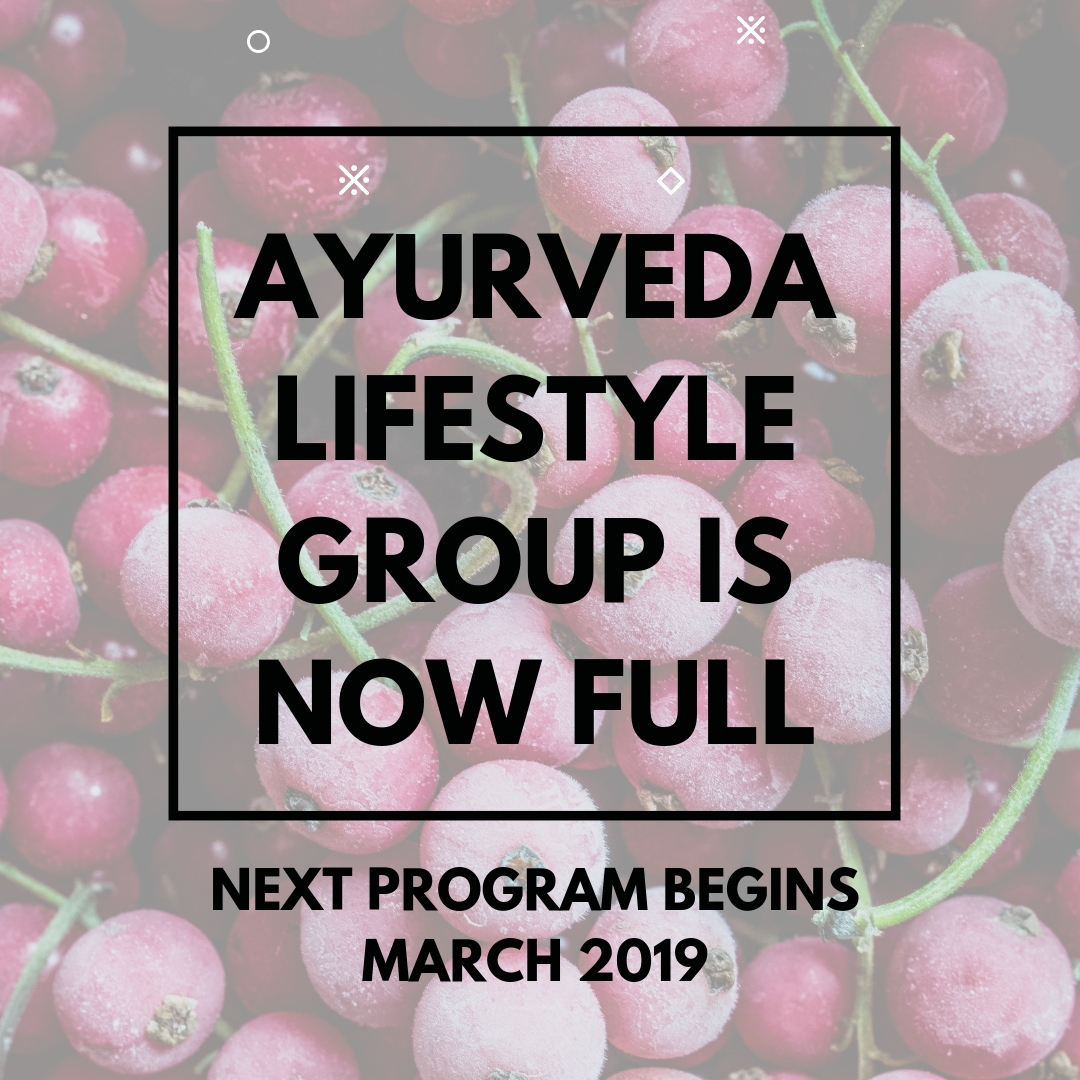 NEW Group Ayurveda Lifestyle Program (2).jpg