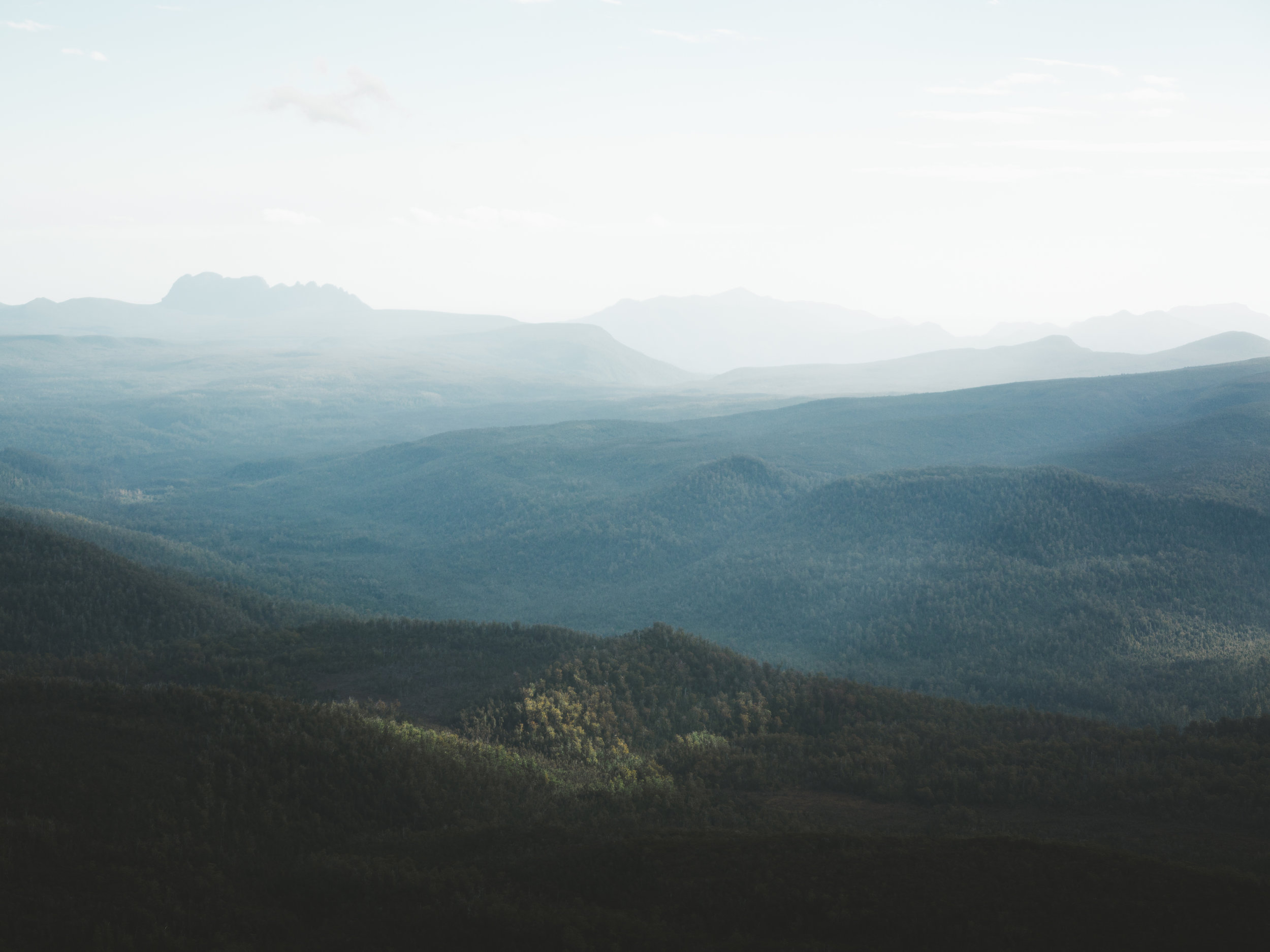 Hartz Peak Evening-7.jpg
