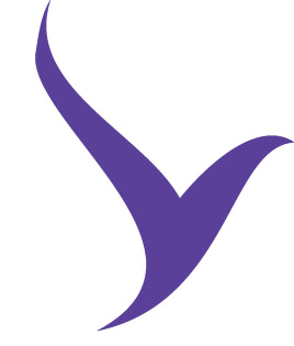 Volar_Logo_FinalArt_V_only.jpg