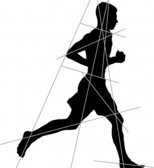 Movement patterns orthobinoomy