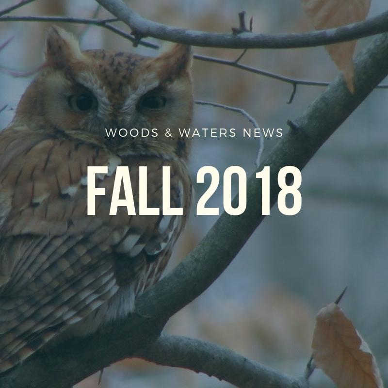 Woods & Waters News.jpg
