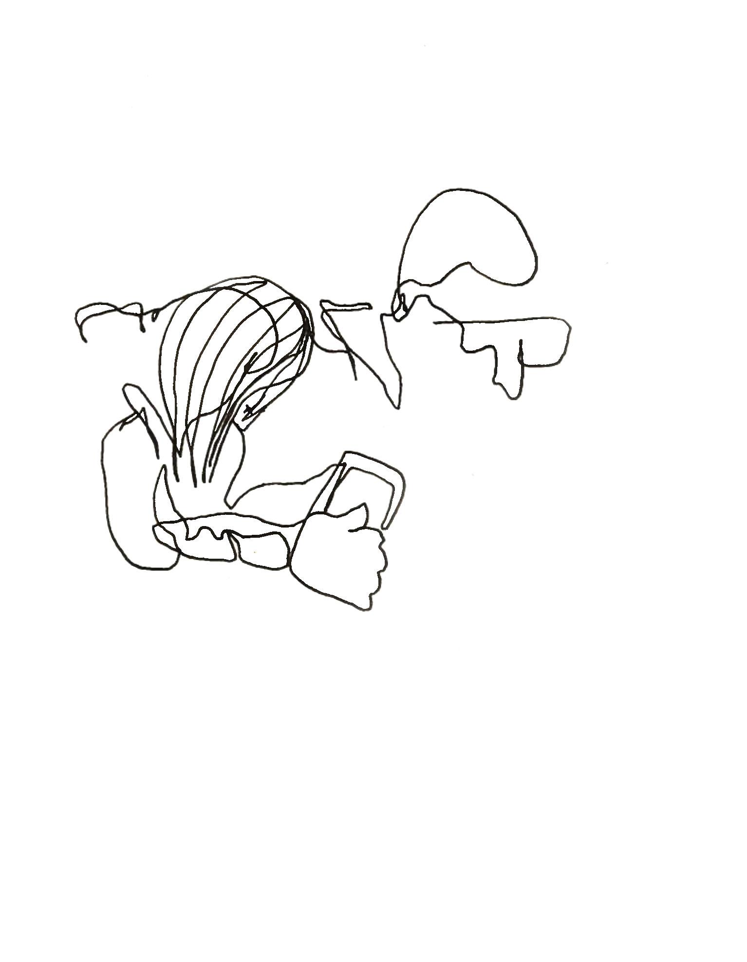 sleeping lovers, 2018   ink on paper