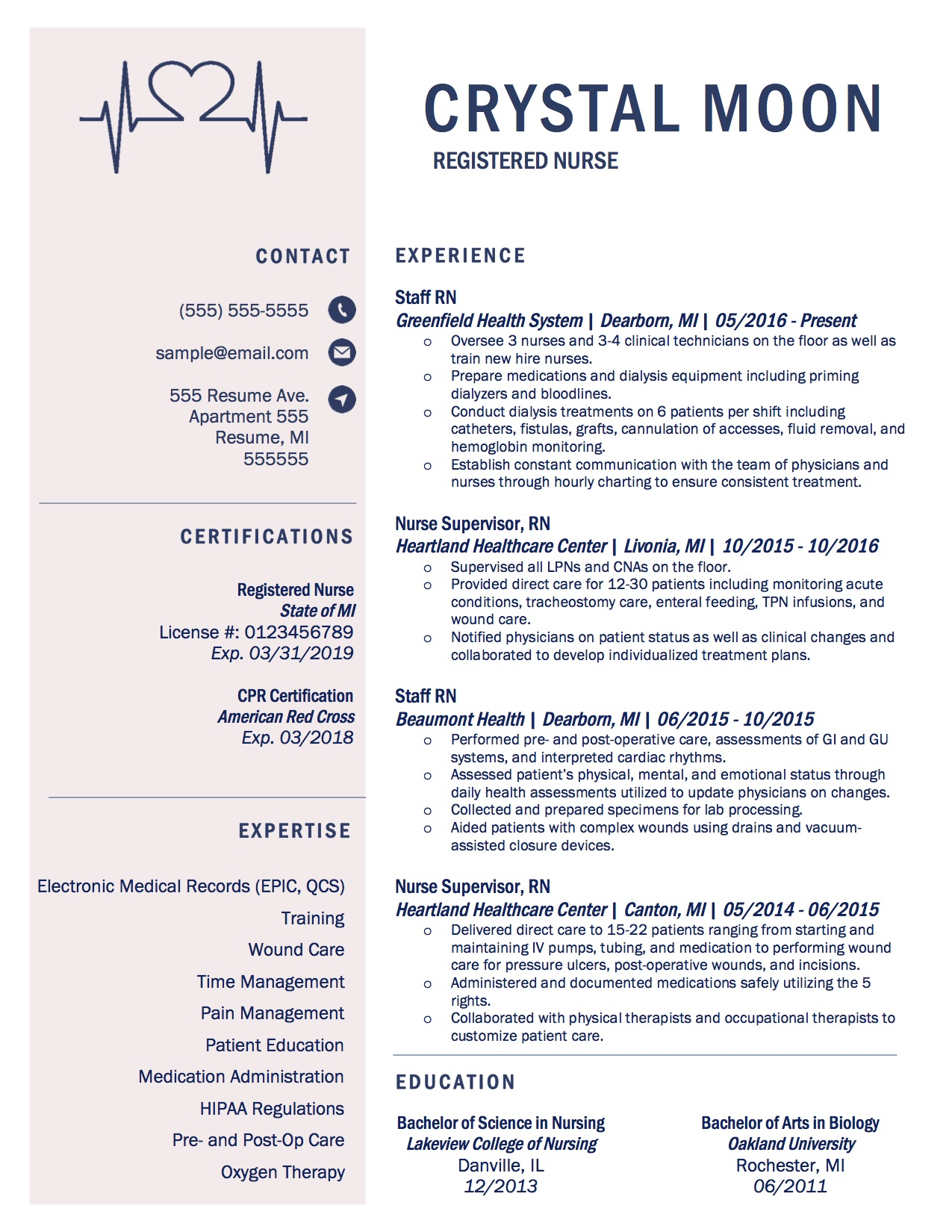 Client Resume #12. Click to Enlarge.