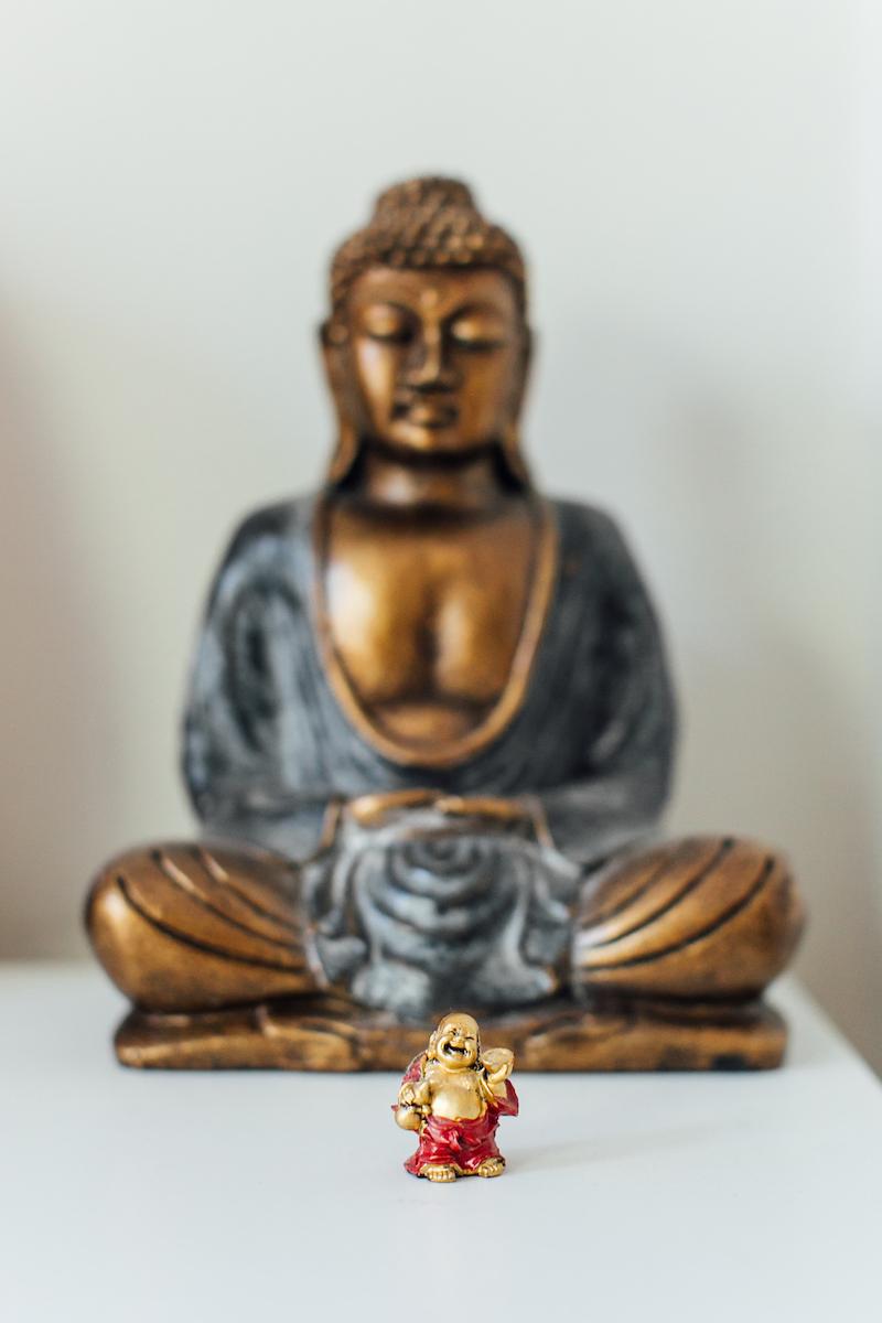 Falconcara_Meditation-2 copy.jpg