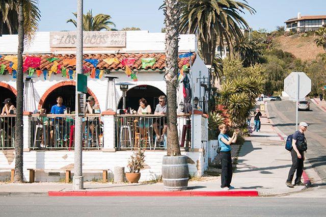 Tourism, San Diego Pt.1 ▪ ▪ ▪ #sandiego #oldtown #canonusa #canont5i #tourism #travelphotography