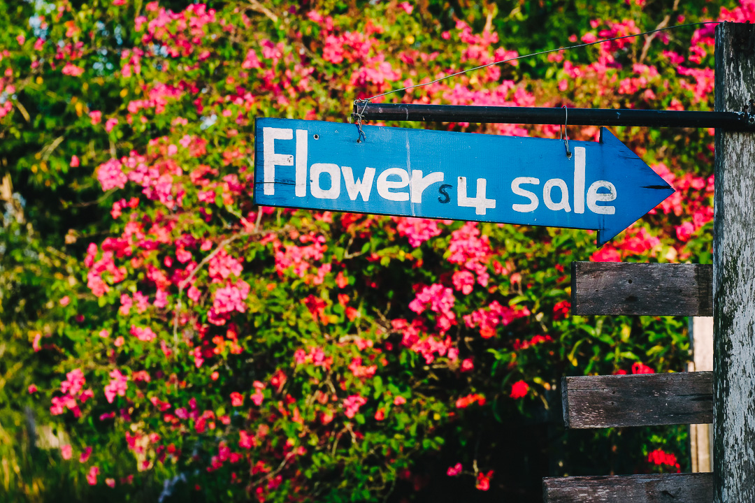 Flowers 4 Sale