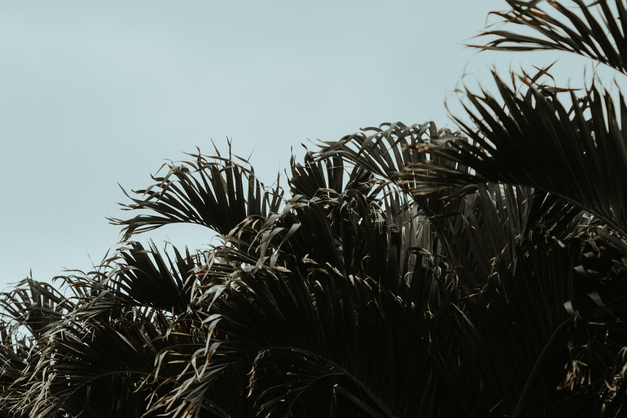 ©trinjensen photography_0840.jpg