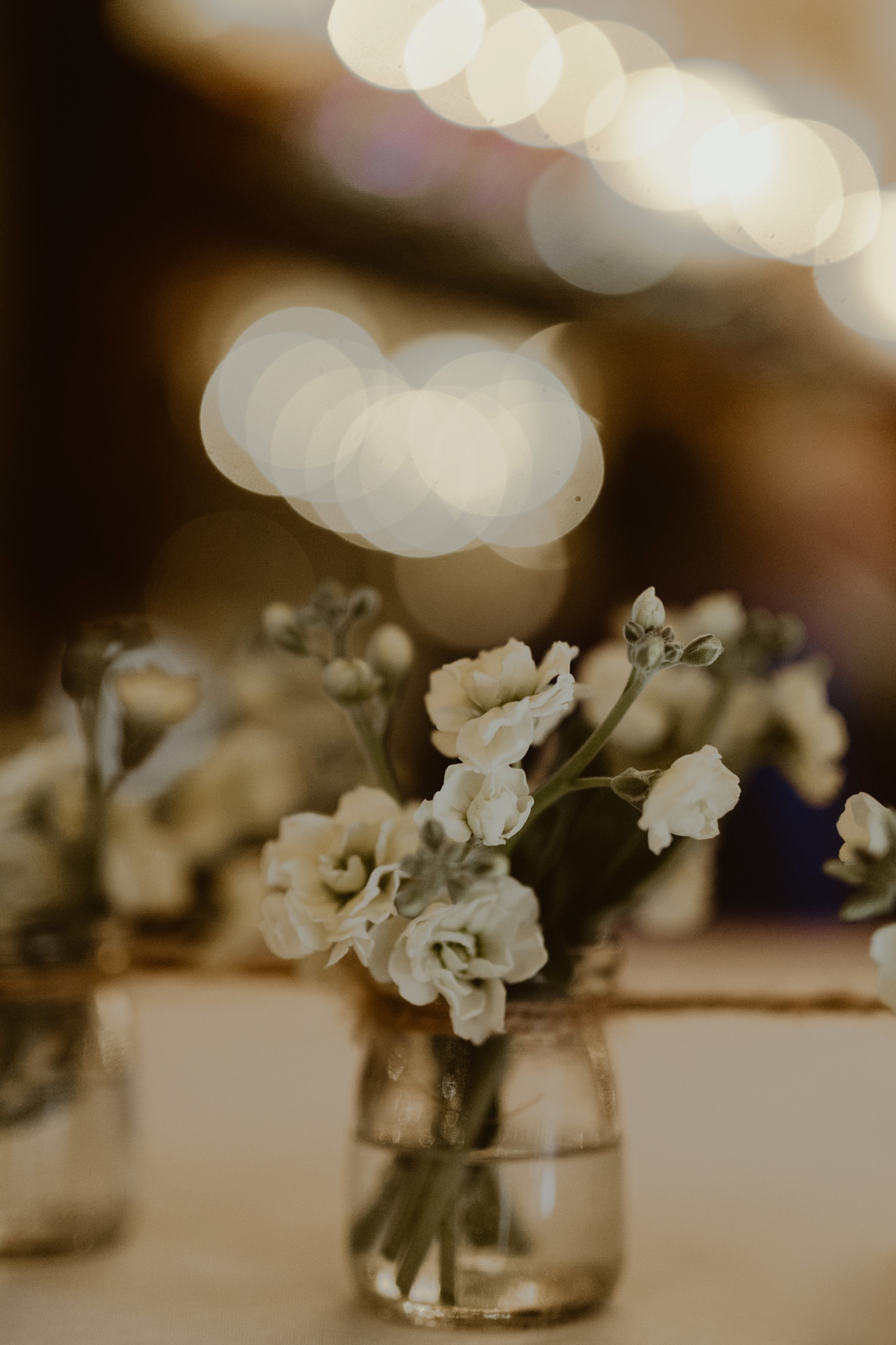 trinjensen photography, nebraska outdoor wedding photographer_2872.jpg