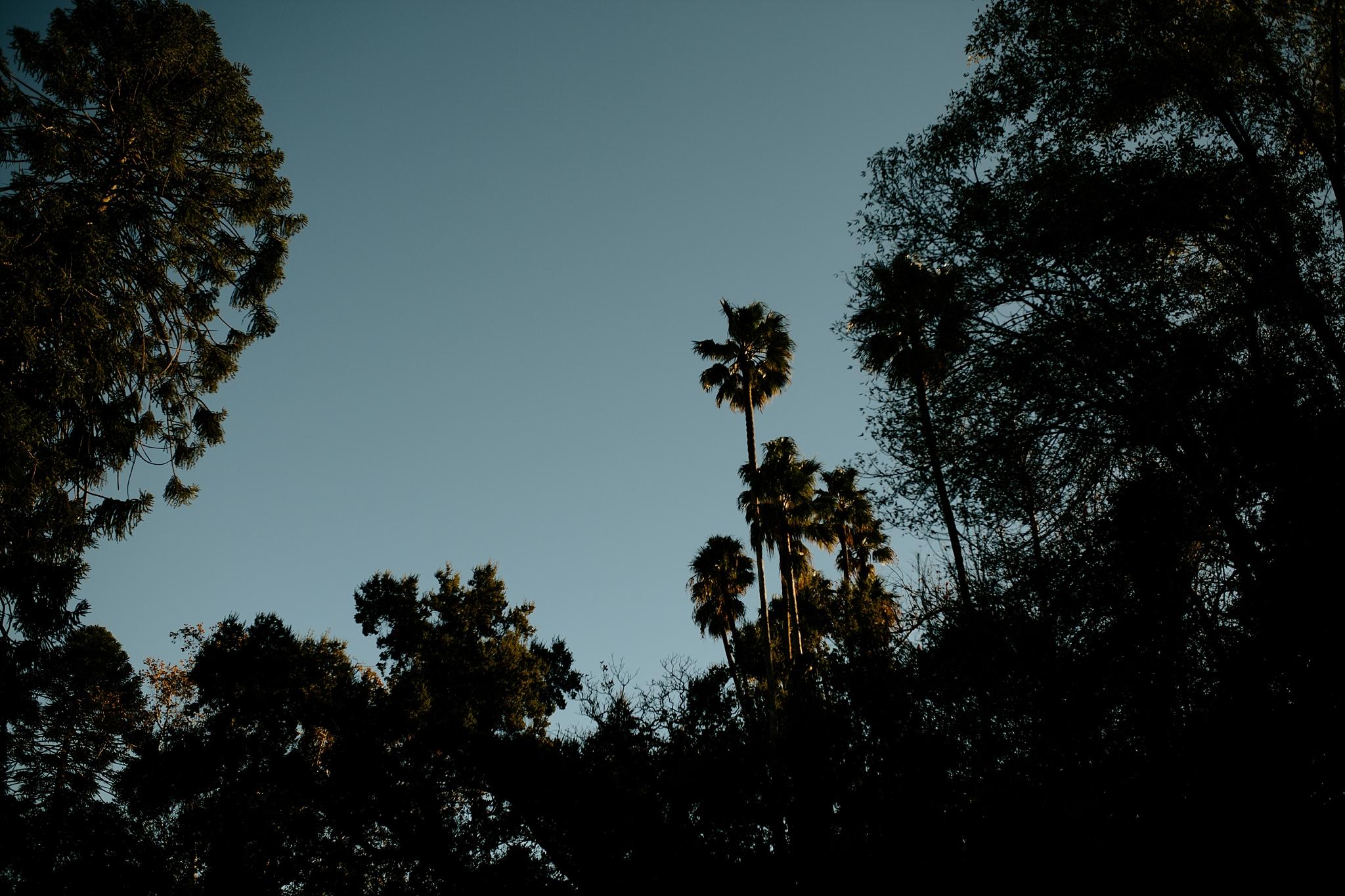Bohemian Orcutt Ranch Wedding in Los Angeles California  - Los Angeles Californai Wedding Photographer_0050.jpg