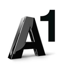 Logo A1.png