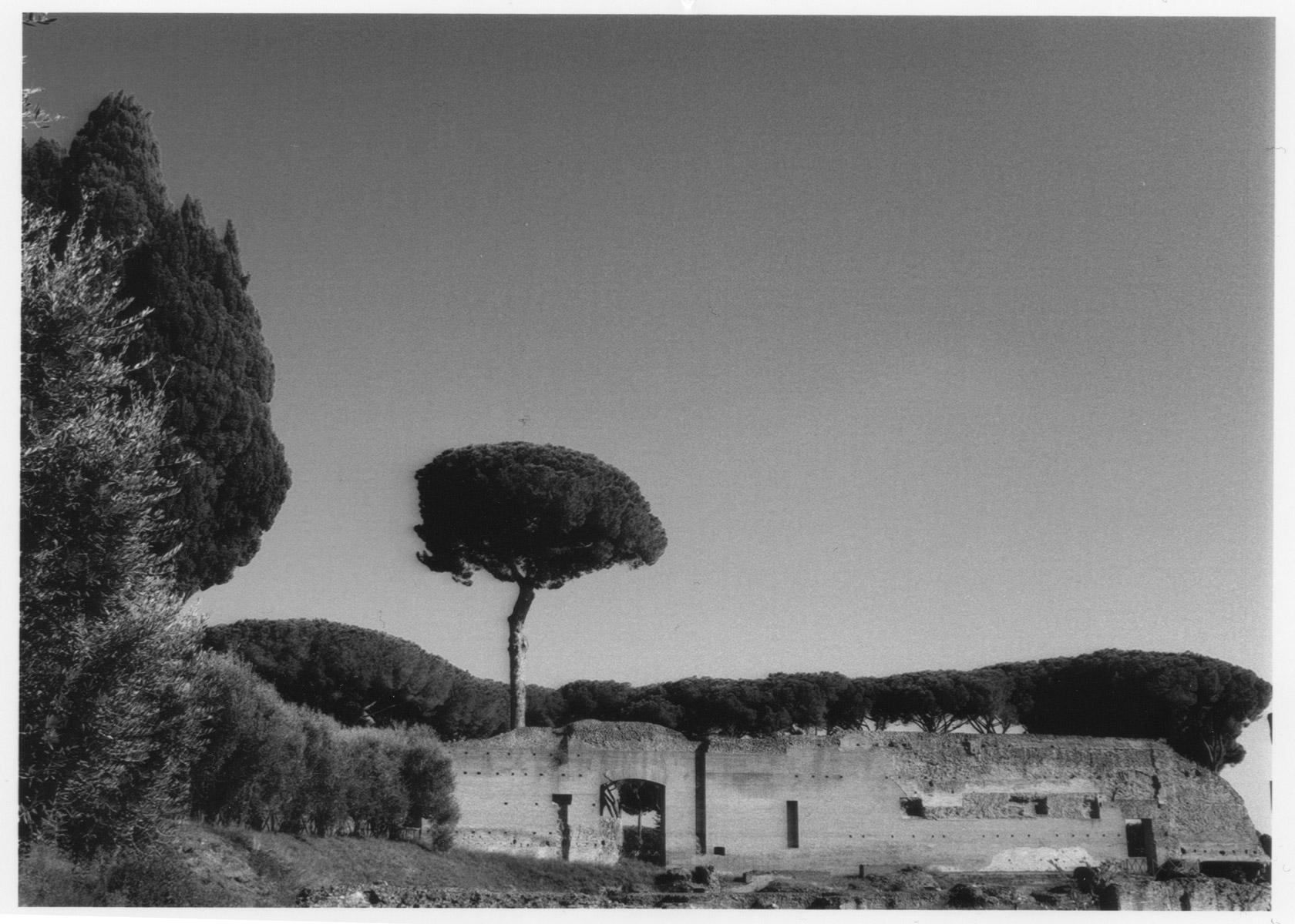 Rome-Matthew-Attard-Navarro-03.jpg