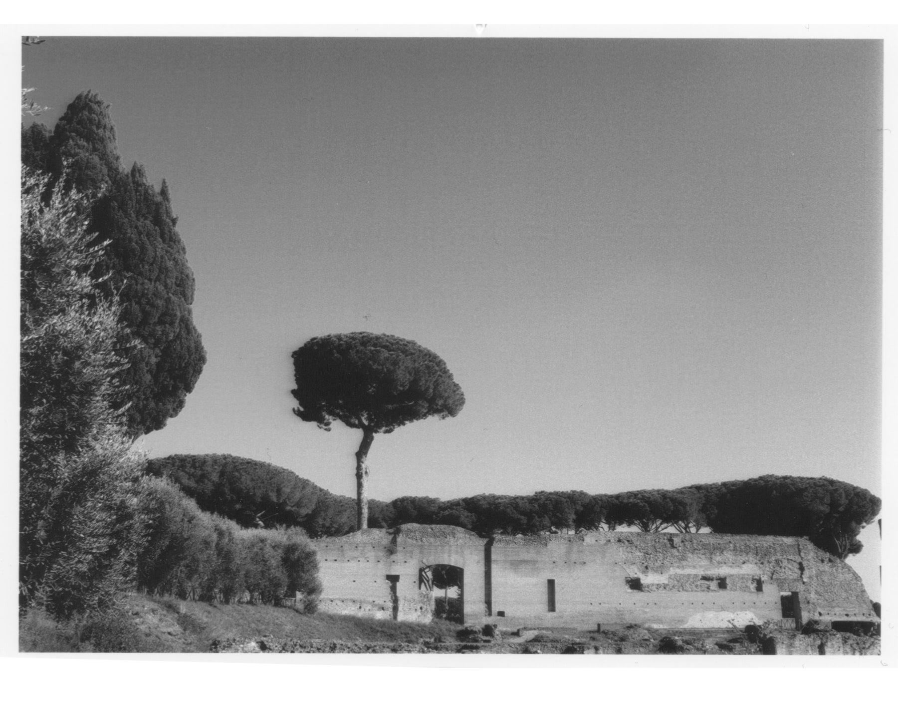 Rome-0 2.jpg