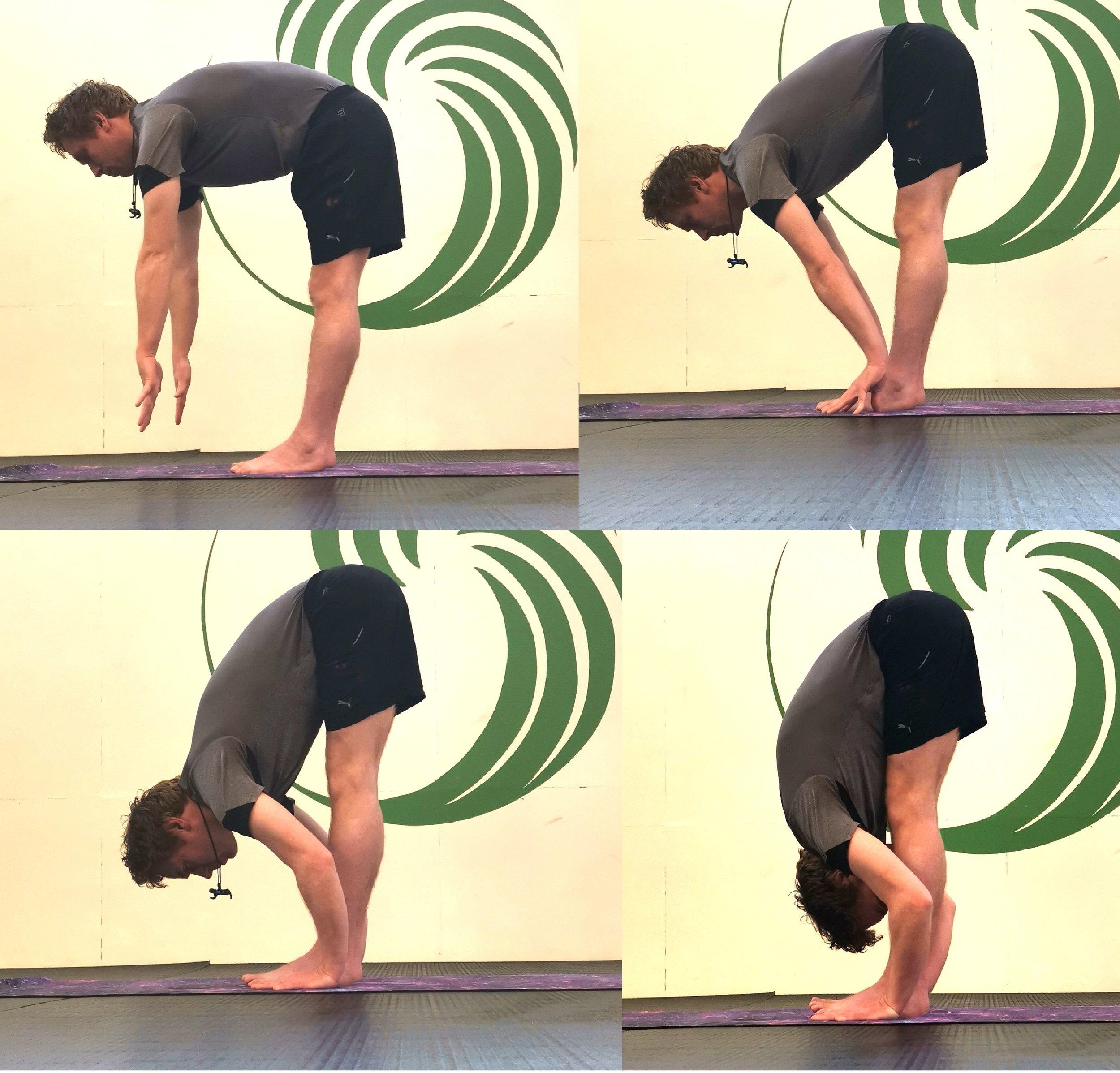 Fold Folds (Hastha Padasana), plus progression from beginner to intermediate