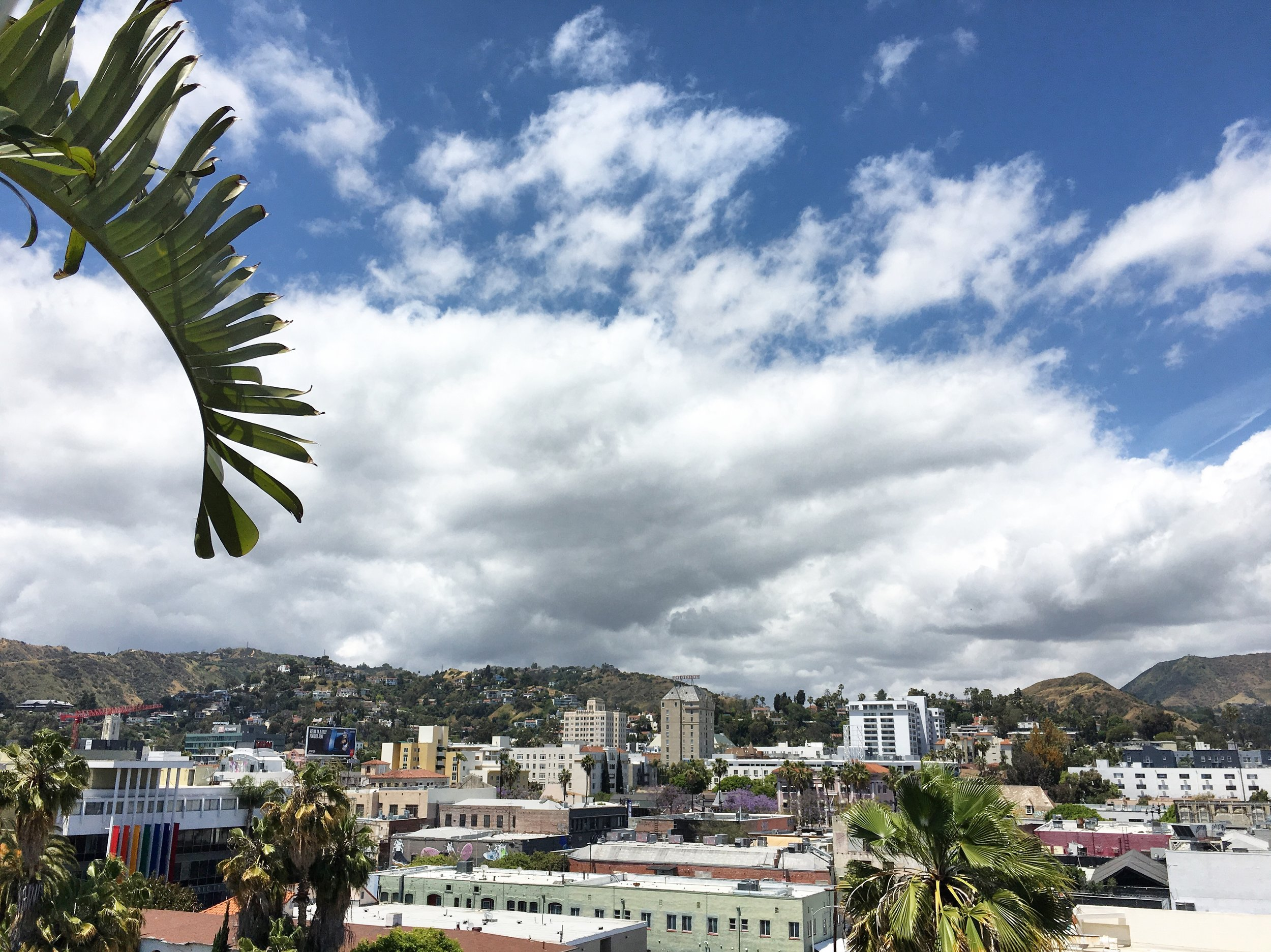 Mama Shelter Hollywood Hills.JPG