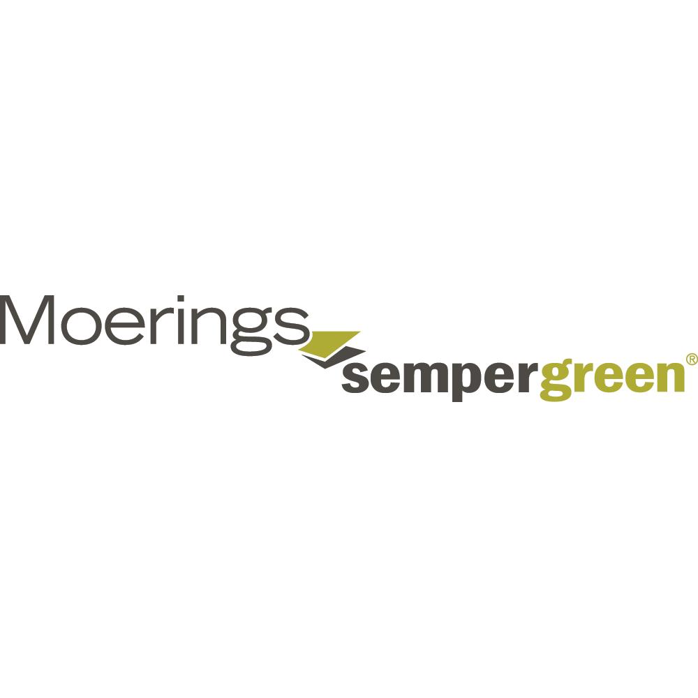 MoeringsSempergreen_square.png