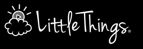 She+Got+the+Idea_The+Little+Things.jpg