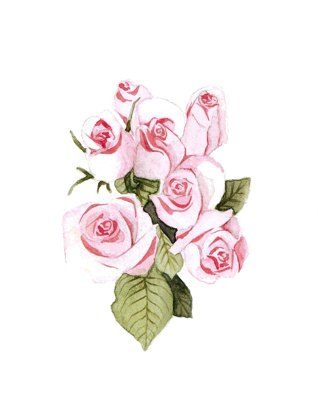 roses_final.jpg