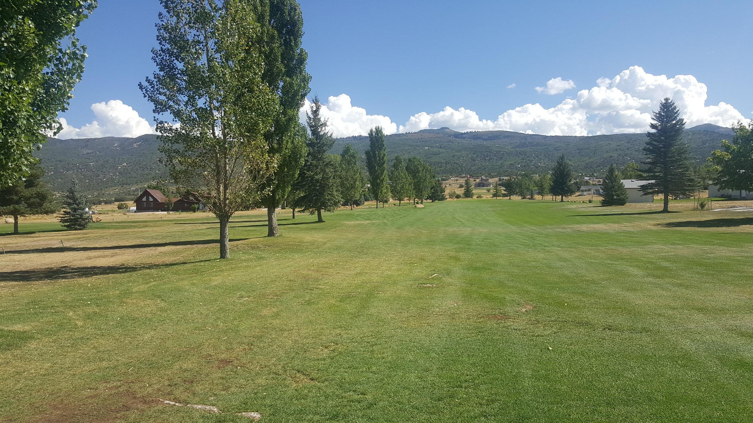 golf1 (5).jpg
