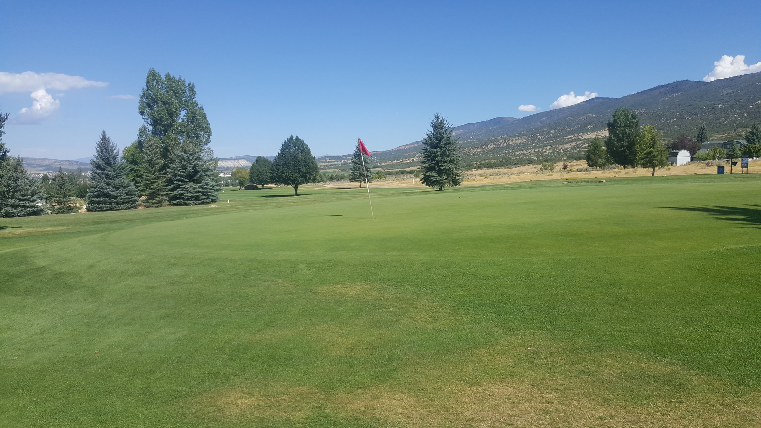 golf1 (6).jpg