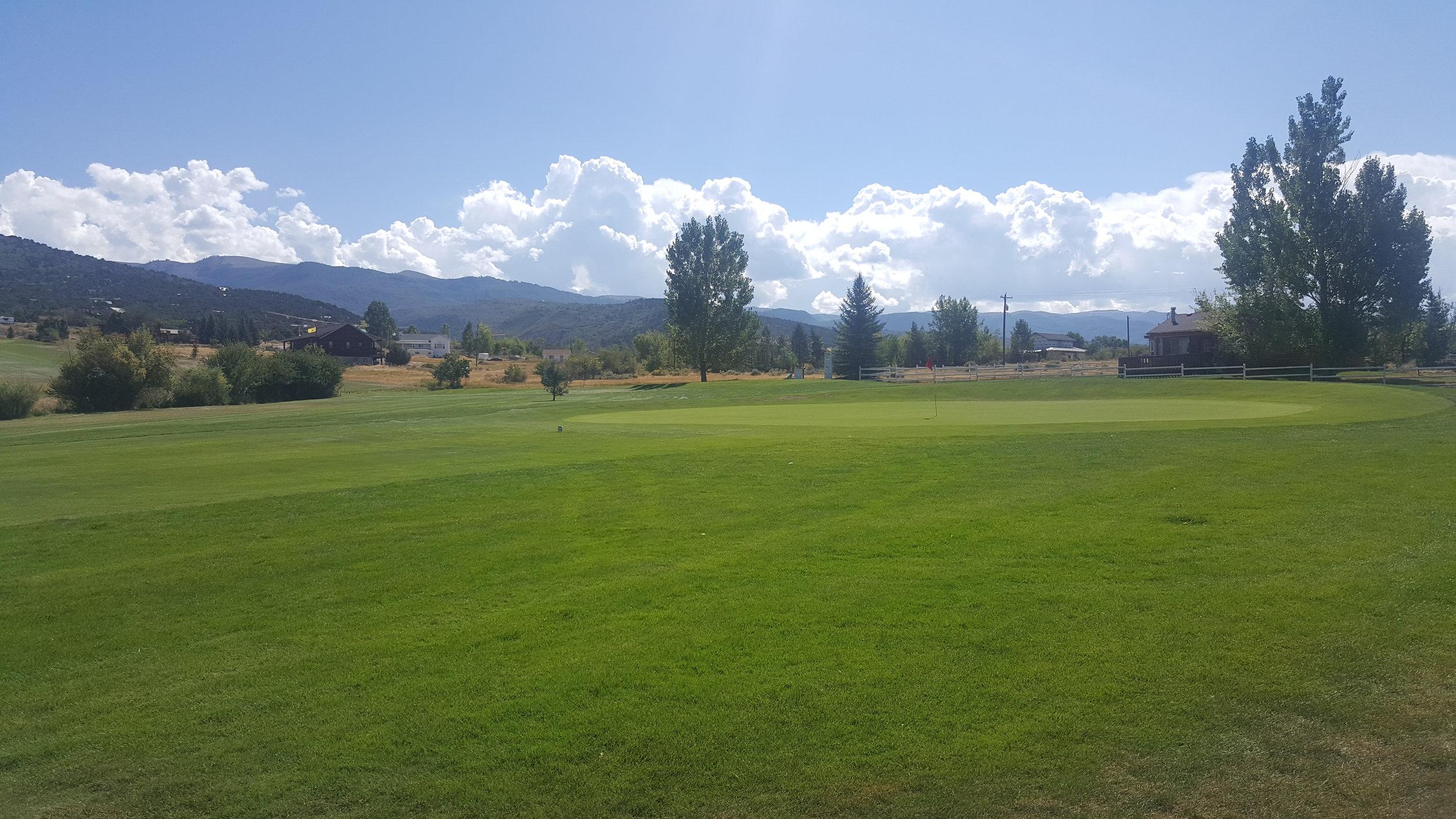 golf1 (10).jpg
