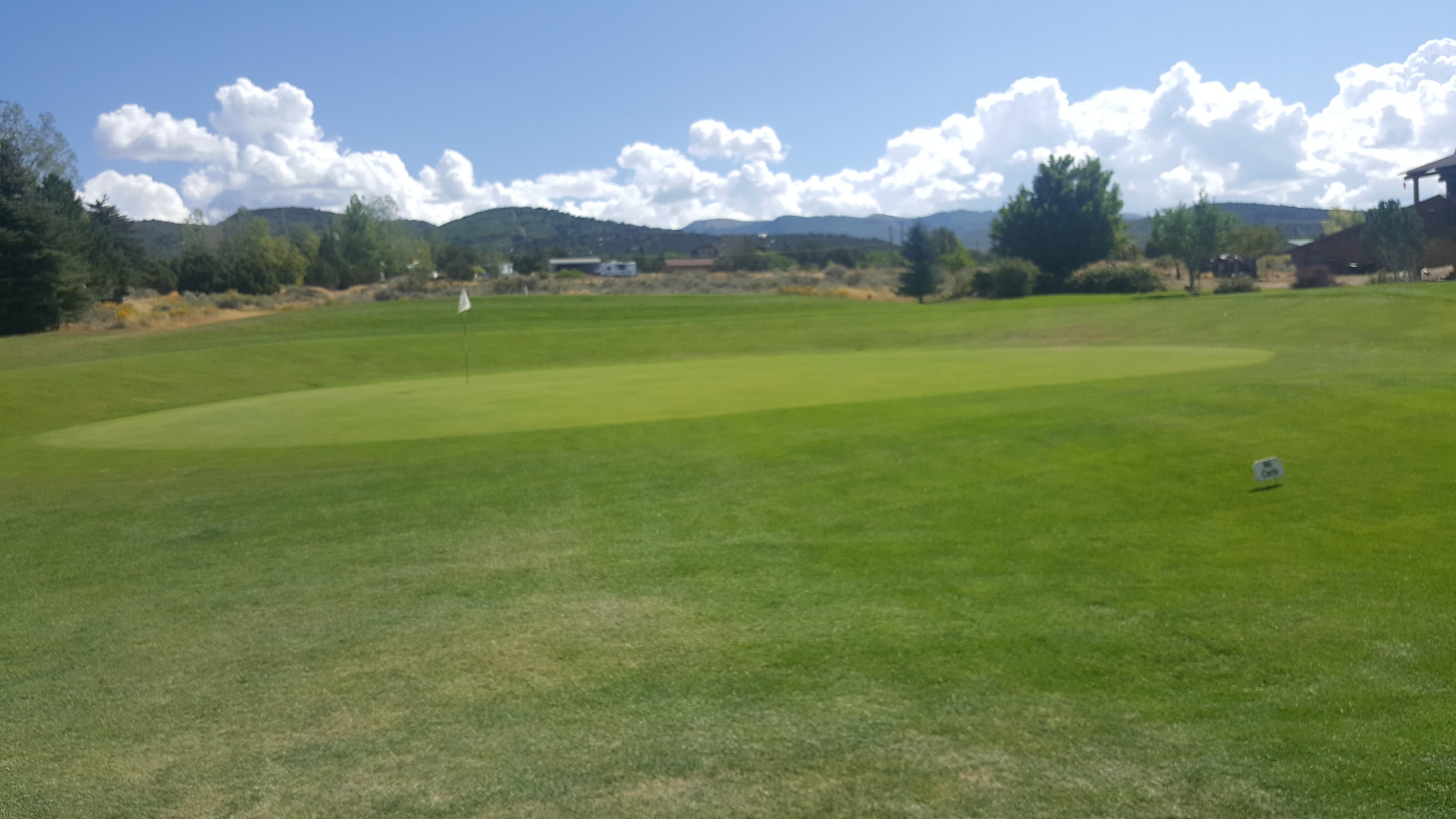 golf1 (12).jpg