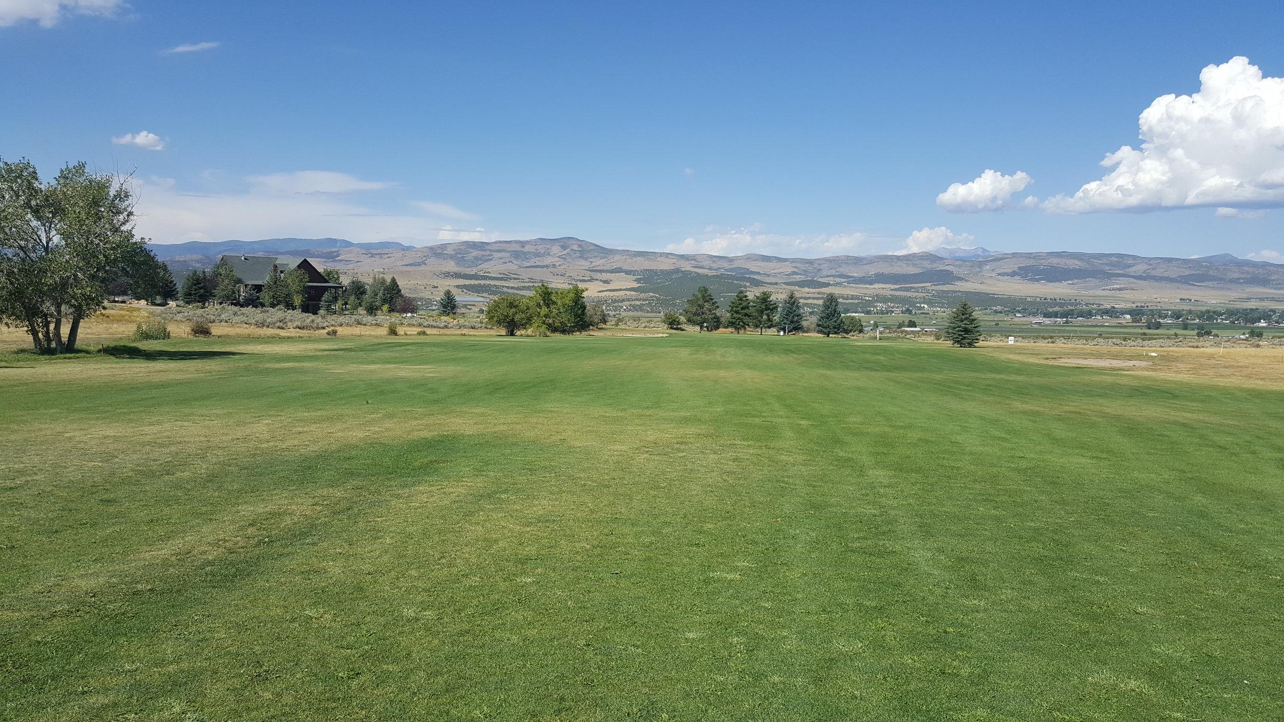 golf1 (16).jpg