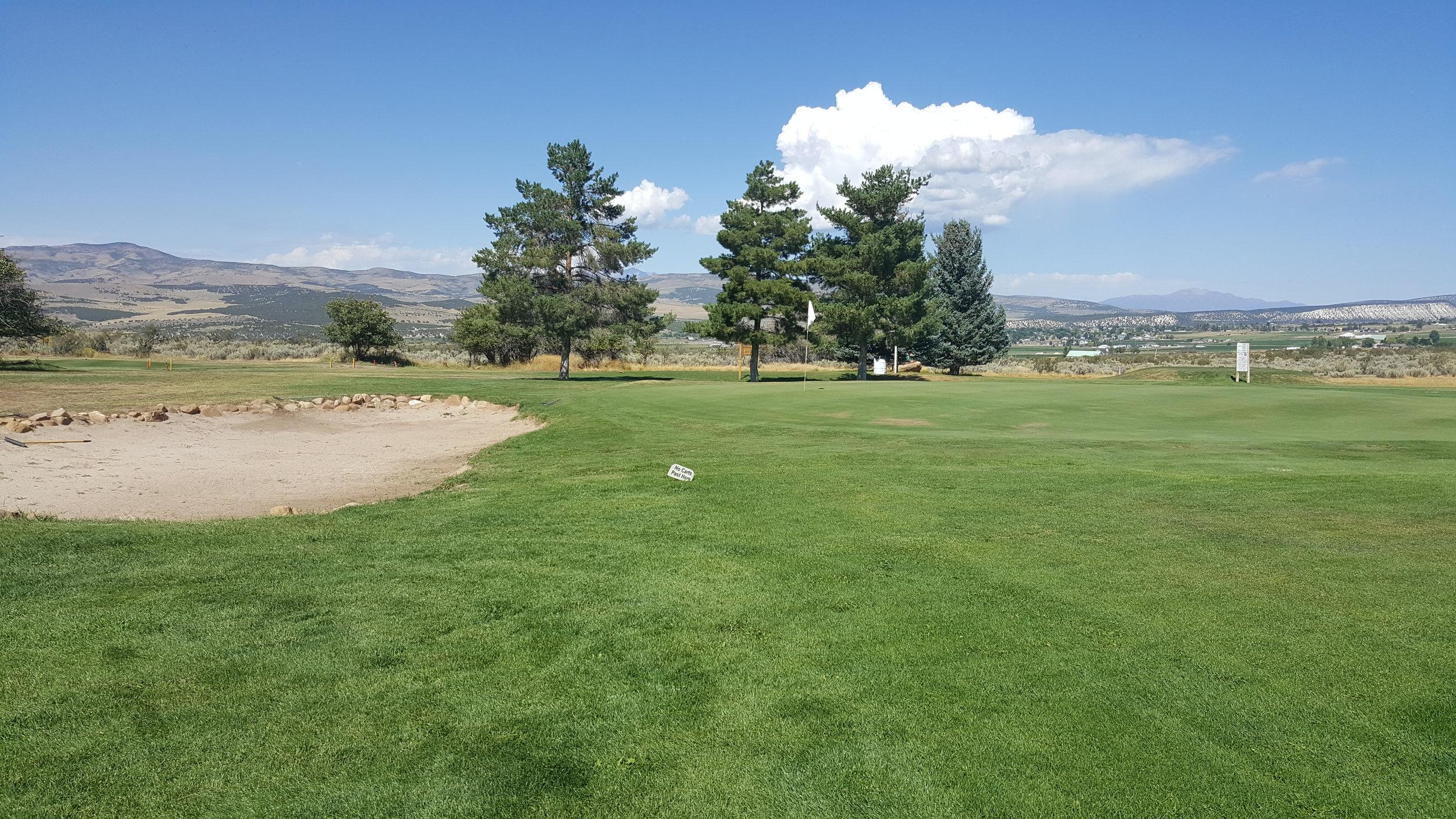 golf1 (17).jpg