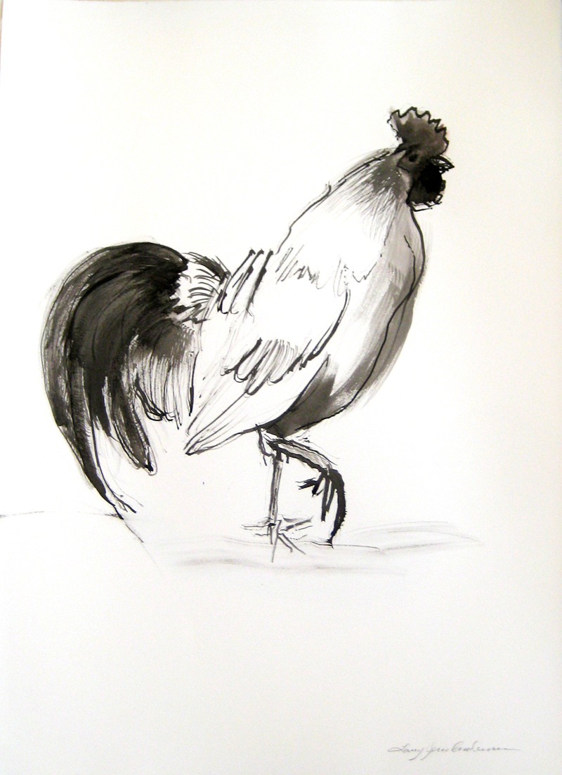 ROOSTER 1 ink on paper 30 x 21.75 inches