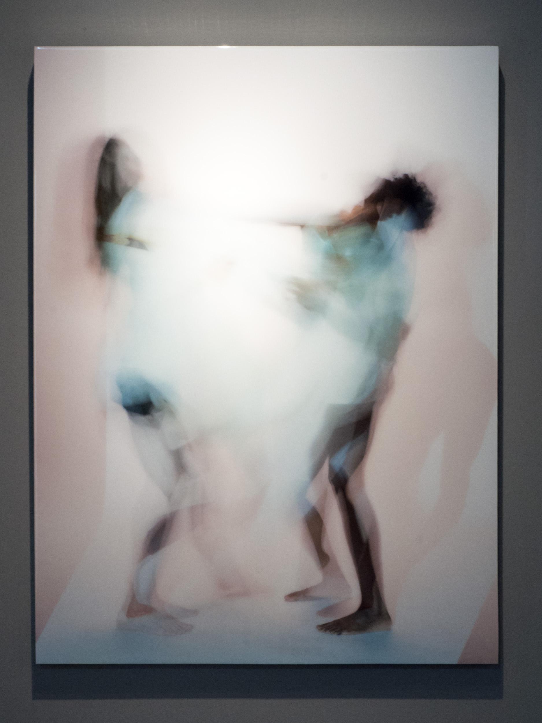 Chimera Alba 002 archival pigment print, resin & wood panel 36 x 48 inches PHE 109G