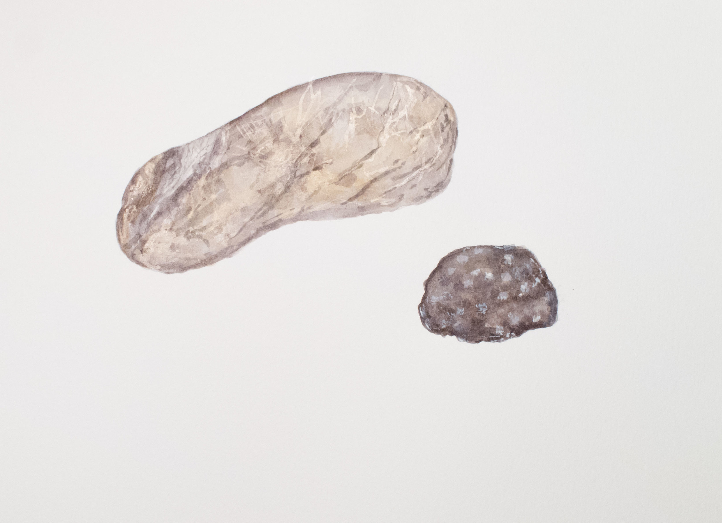 A Landscape Fossilized watercolor 16 x 20 inches ASC 130G