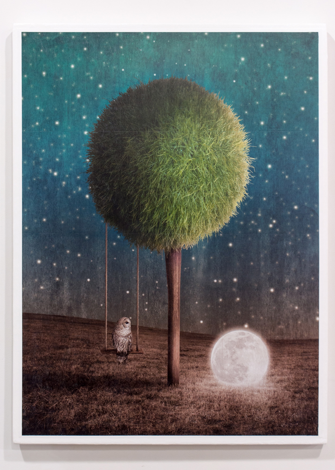 Tappy And The Moon gridded photograph on panel with gel medium 33 x 49 inches GNO 215G