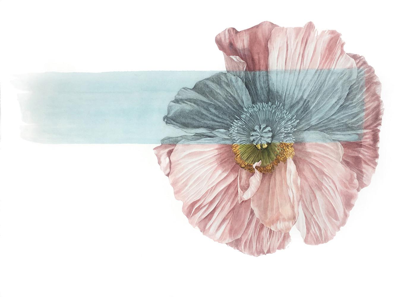 "Jamie Kim    Duplicity 1 / Watercolor on Paper / 21 x 28.5"""