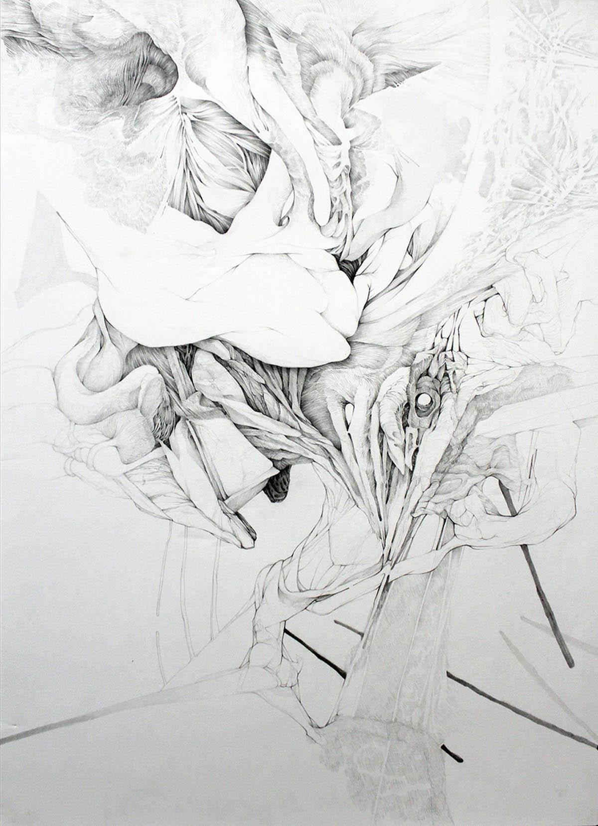 Anna Kenar Zgubna Postać III graphite on paper 22 x 30 inches AKE 003G.jpg