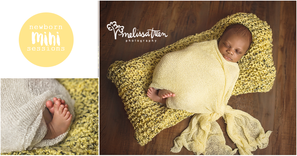 Over the mini years we have been photographing newborns, we have always had so many requests for newborn mini sessions. So, we decided to now offer a simpler version of our newborn portrait session - newborn minis!  Newborn mini sessions capture beautiful images in custom styled props. The biggest difference is a shorter session time, producing fewer images than our traditional newborn sessions. They are the perfect option to capture a limited amount of images on a budget. Email us for more details...