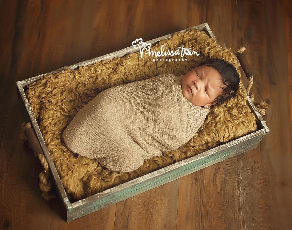 newborn baby photos high point north carolina portraits melissa treen photography.jpg
