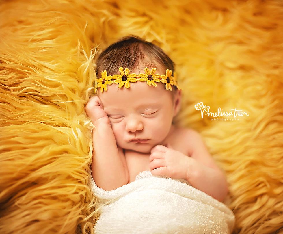 3bmelissa treen photography burlington nc newborn photographer .jpg
