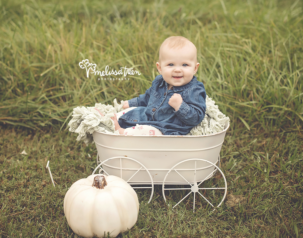 6 month baby girl sititing in carriage with white pumpkin greensboro photographer fmaily baby child burlington chapel hill.jpg