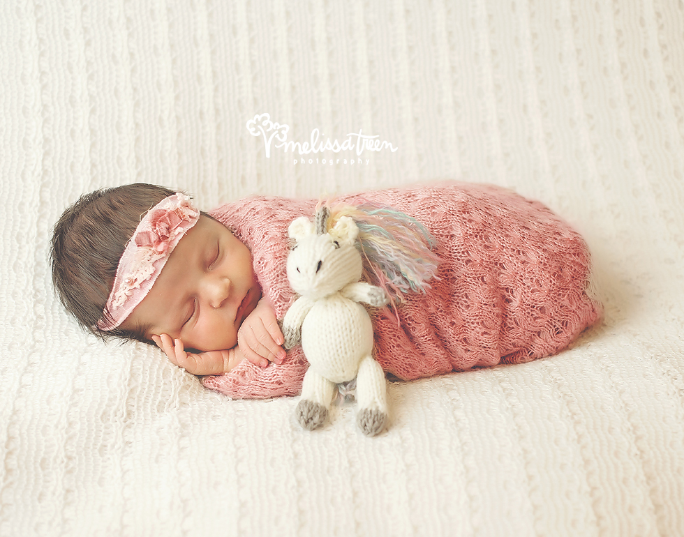 newborn baby with unicorn photo greensboro photographer burlington nc.jpg