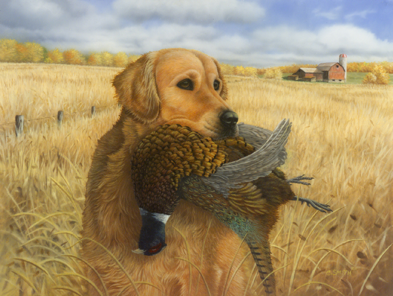 Golden Retriever with Pheasant