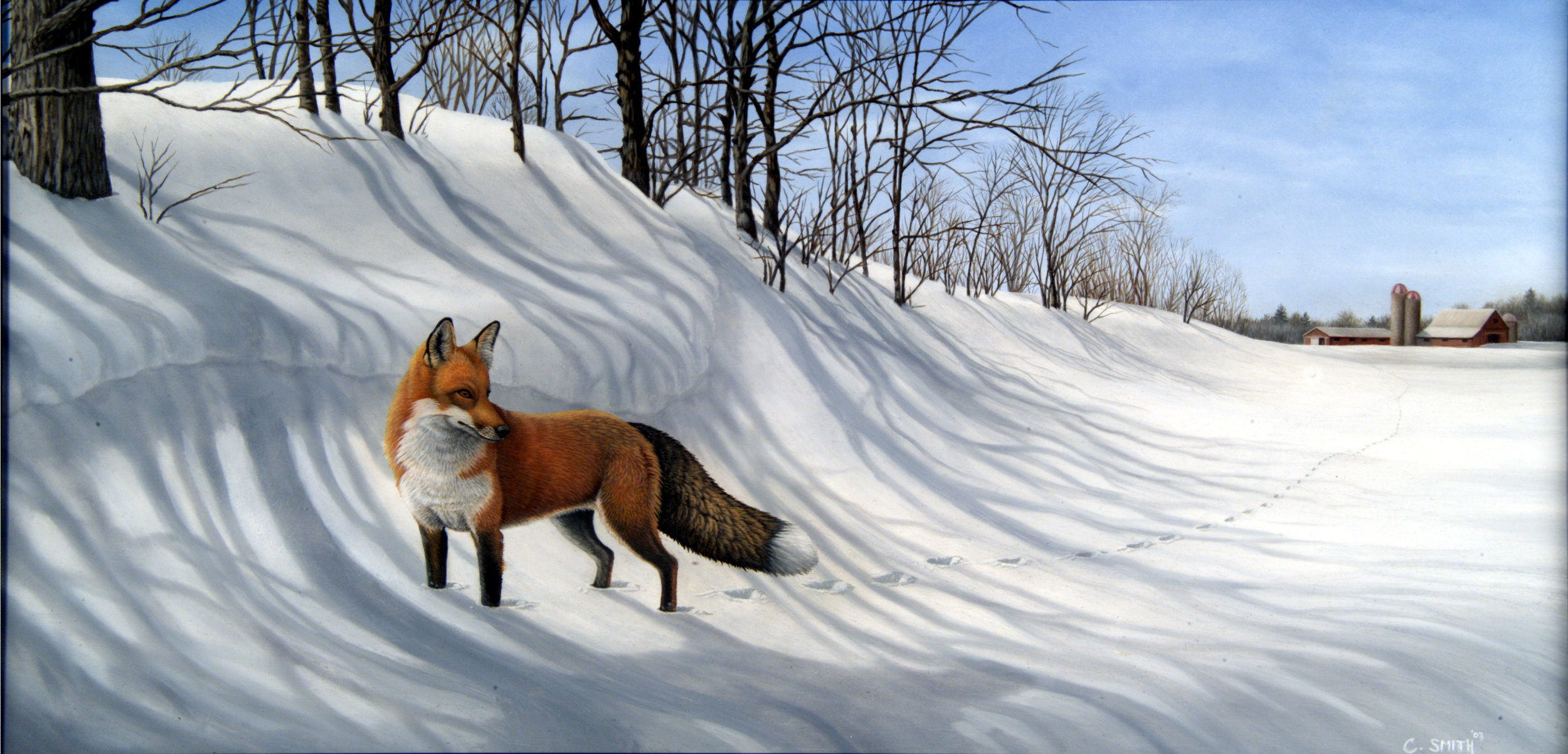 Hunting the Farm, Red Fox
