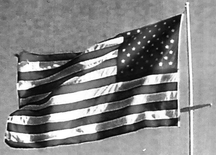 Flag Values copy.jpg