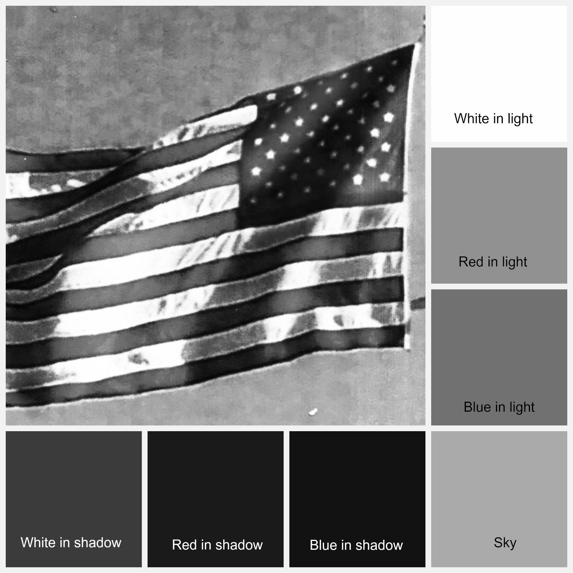 Flag Collage greyscale.jpg