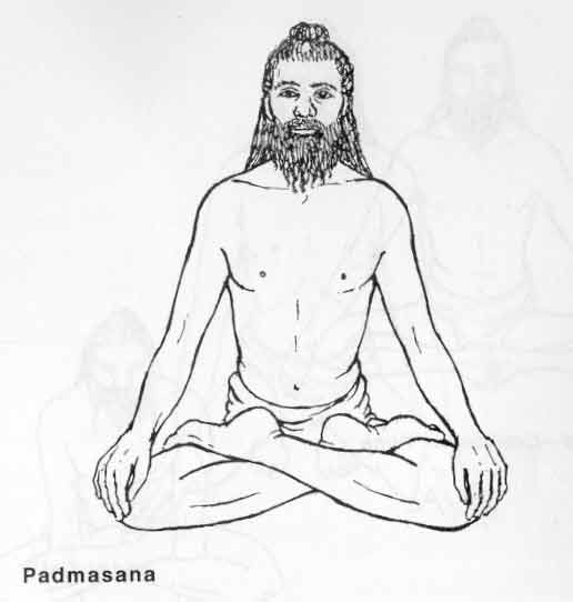 """""""Of the 84 lakh postures, hear that which is best: the lotus posture taught by Ādinātha, which is now described."""" - (Dattatreyayogaśāstra 34, 1100-1200-luvun teksti)"""