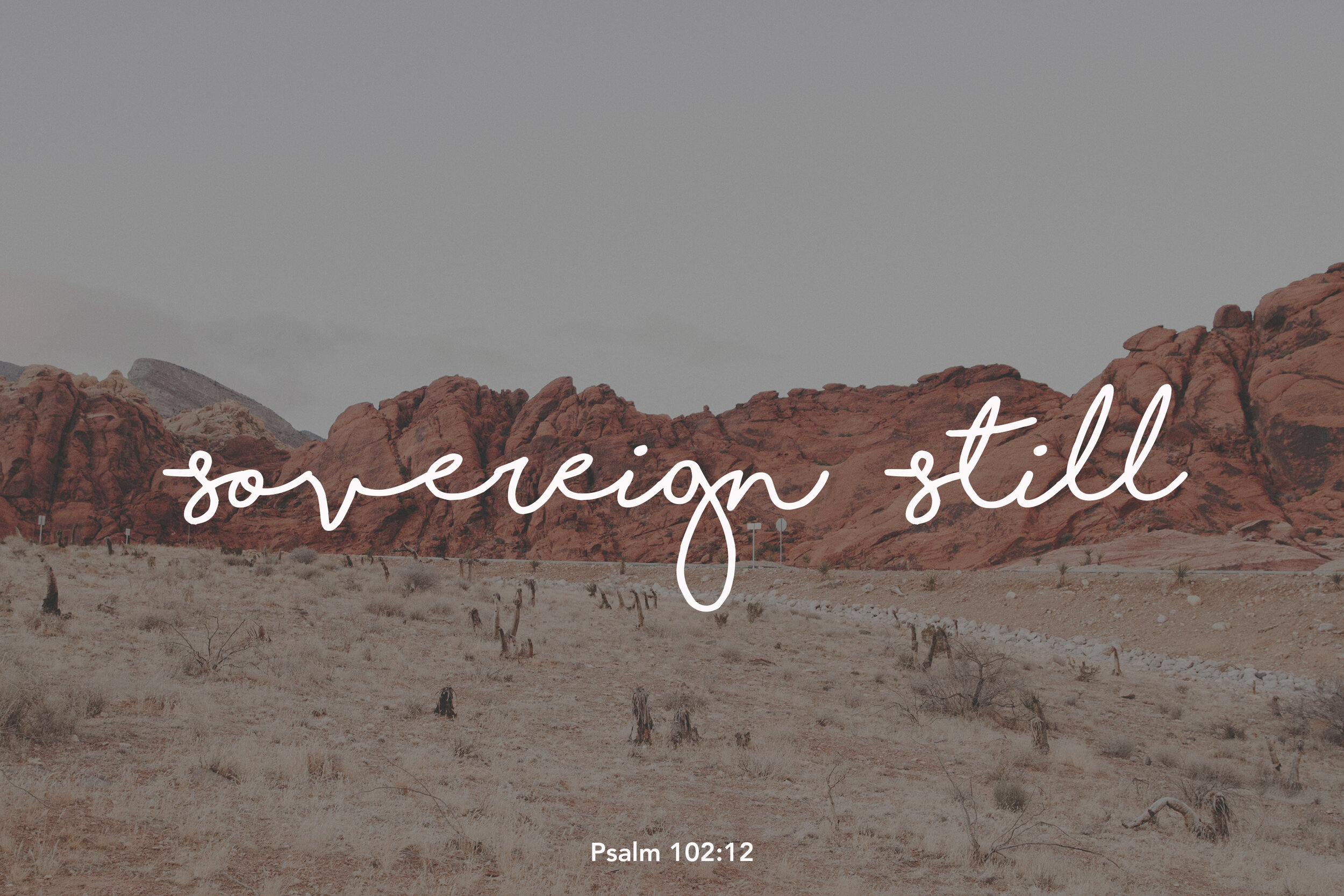 sovereign-still.jpg