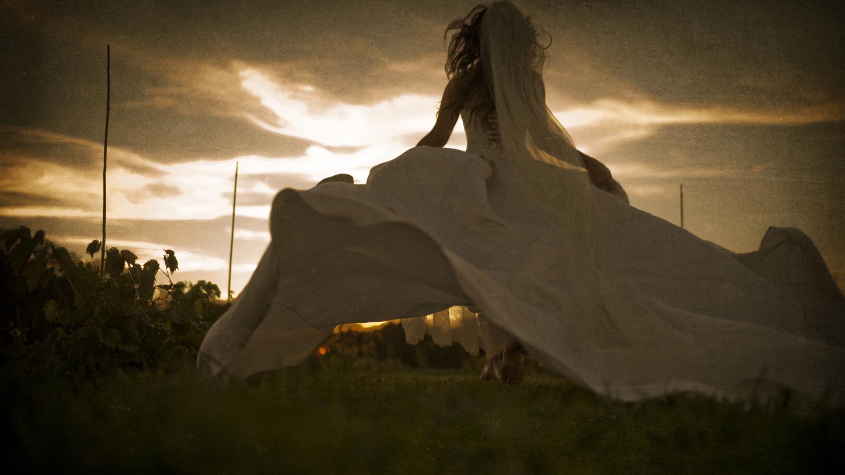 wedding_Photographer_Beloit_peer_canvas_bride_vines_dc_Estate.jpg
