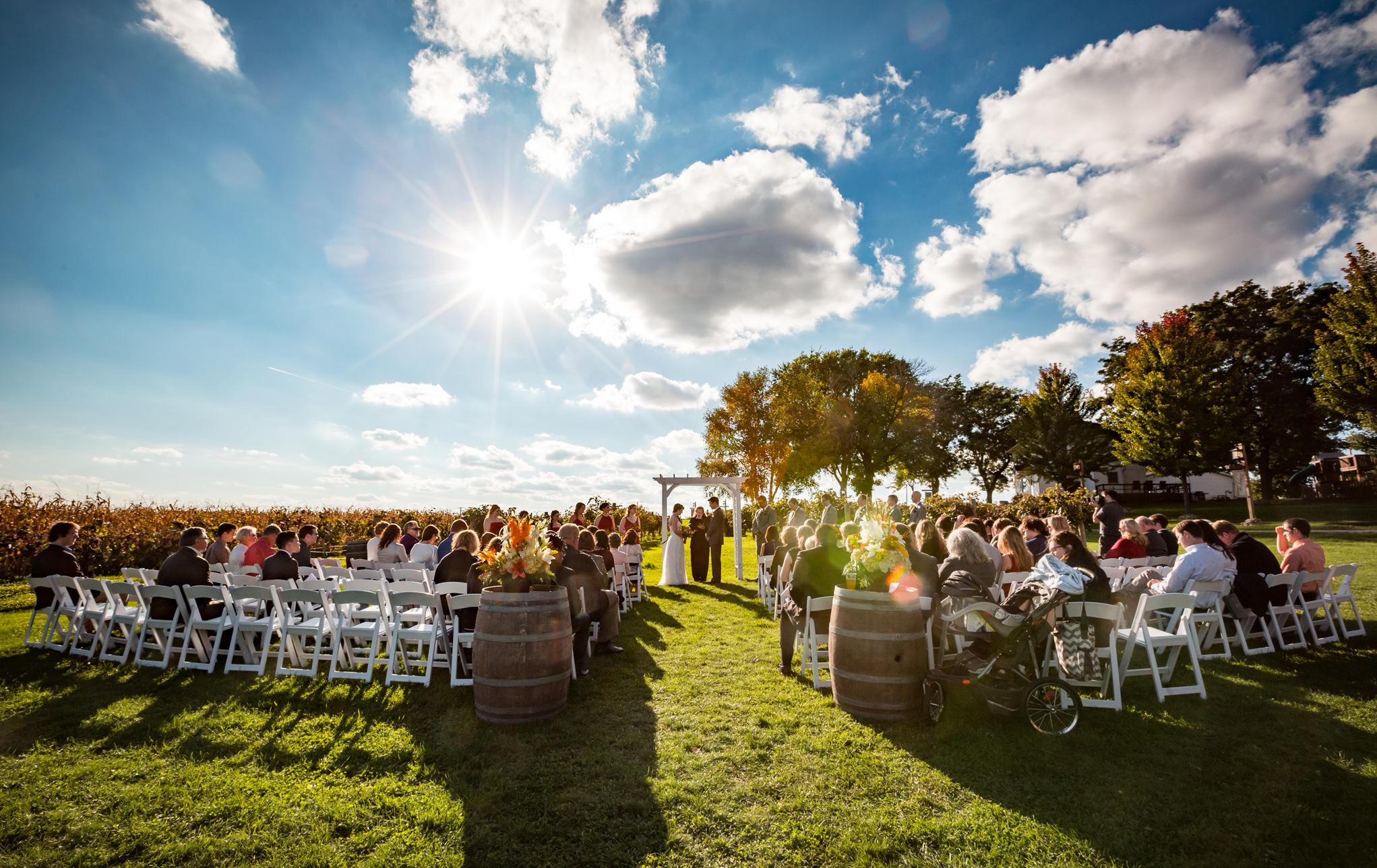 Over The Vines Wedding | Lauren + Thore 0195.jpg