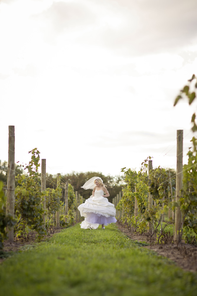 DC Estate Winery Wedding Photogrpaher Rockford_Beloit_Chicago004.jpg