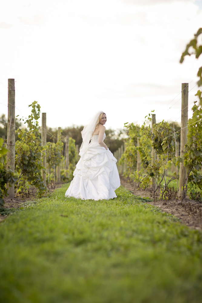 DC Estate Winery Wedding Photogrpaher Rockford_Beloit_Chicago003.jpg