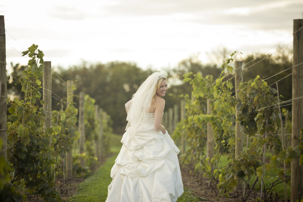 DC Estate Winery Wedding Photogrpaher Rockford_Beloit_Chicago005.jpg
