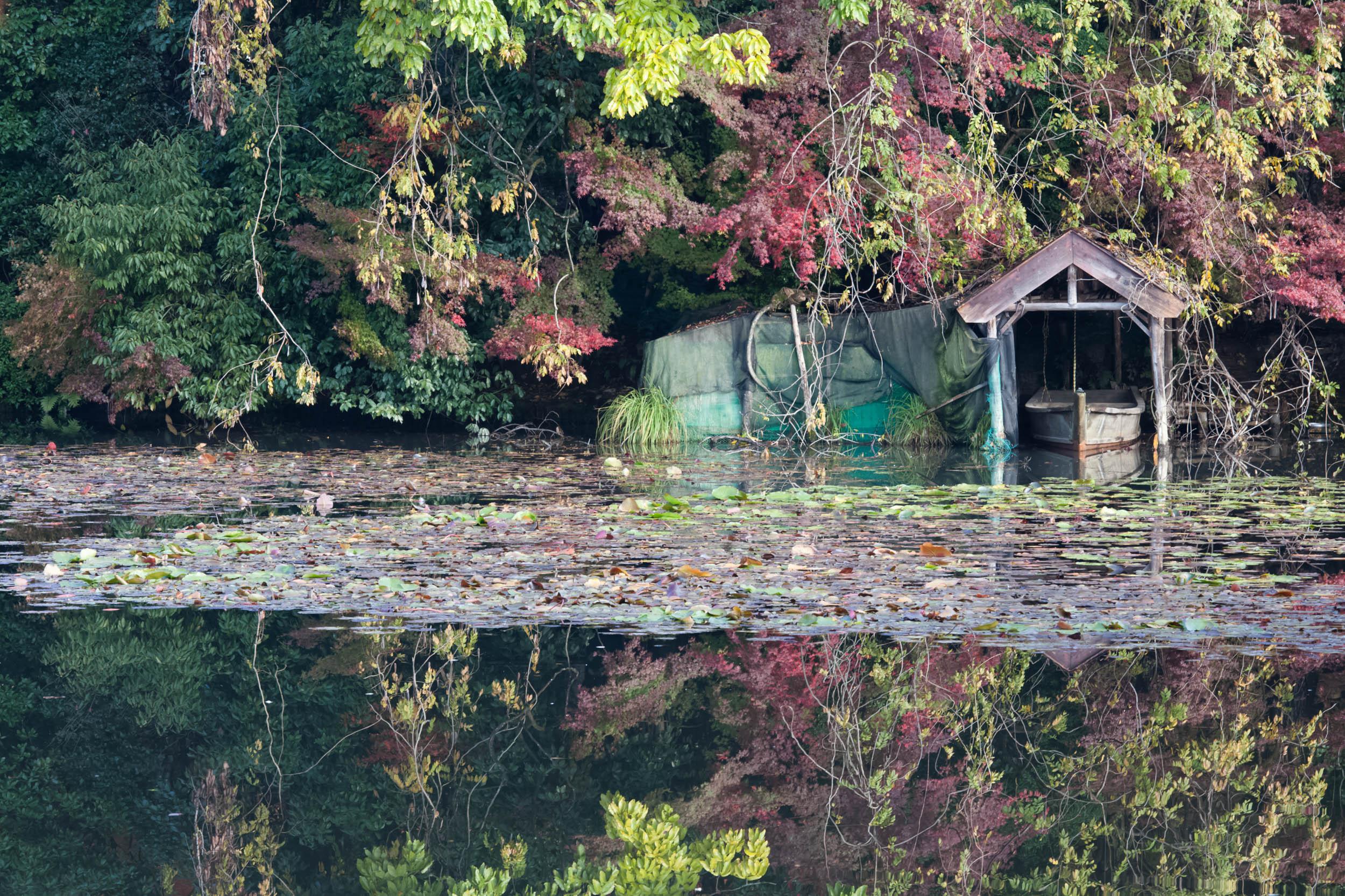 Kyoto: Autumn Sojourn